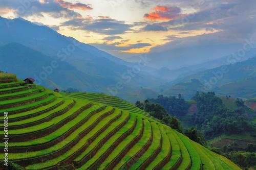 Fotobehang Rijstvelden Rice field at Mu Cang Chai, Vietnam