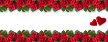 Banner With Red Roses, Valentines Hearts And Place For Your Text Isolated On White Background