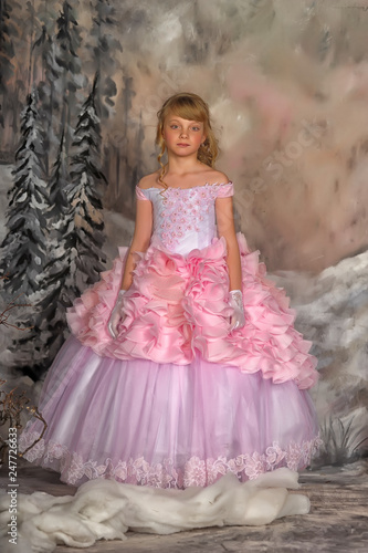 Fotografija  Portrait of adorable smiling little girl in princess dress