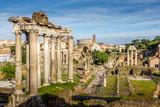 Roman Forum in Rome, Italy - 247727618