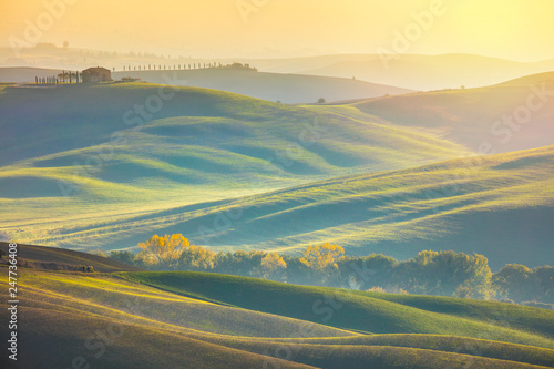 Sunny Surrise Landscape -  Wavy fields at the morning