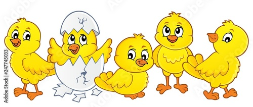 Cute chickens topic image 1