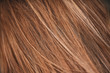 brown hair macro