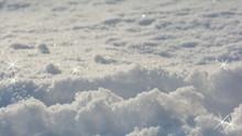 Gwiazdki Na świeżym śniegu ...