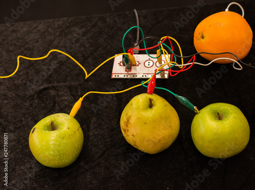 фотография  Cables connected to a device and to apples, oranges and pears