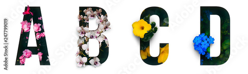 Flower font Alphabet a, b, c, d made of Real alive flowers with Precious paper cut shape of letter. Collection of brilliant flora font for your unique decoration in spring, summer & many concept  - 247799019