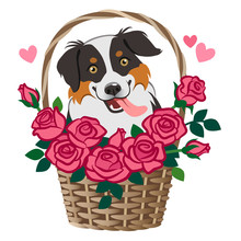 Cute Smiling Herding Dog Sitting In Basket Of Roses Vector Cartoon Illustration Isolated On White. Pet Lovers, Friendship, Love, Valentine's Day, Romance, Dating, Birthday, Thank You, Greeting Card