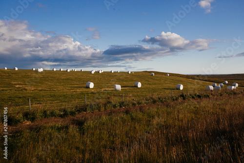 In de dag Inspirerende boodschap Field with hay rolls, Icelandic nature