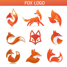 Creative Fox Animal Modern Sim...