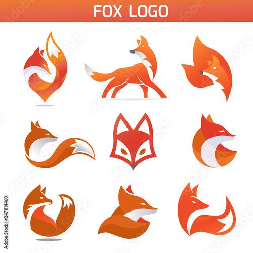 Photo creative fox Animal Modern Simple Design Concept logo set