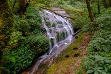 Waterfall In Kew Mae Pan Nature Trail Trekking Jungle Chiang Mai North Thailand