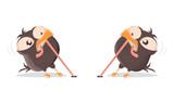 Fototapeta Fototapety na ścianę do pokoju dziecięcego - funny cartoon birds fighting for a worm