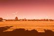 canvas print picture - Feld Landschaft mit Windrädern