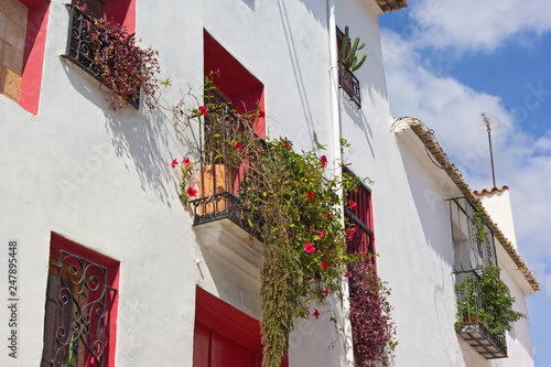 Fototapety, obrazy: A house front decorated by live house plants under a blue sky. Balconies and dark pink painted windows alcoves on facade.