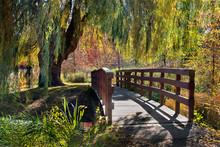 Wooden Bridge Under Weeping Willow In Autumn