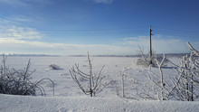 Winter Landscape With Snow Covered Trees. Snow Field.