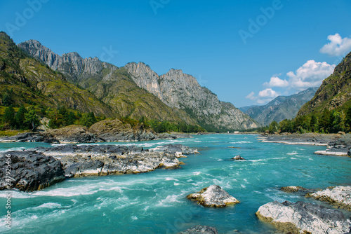 Poster Landschap The Altay landscape with bright turquoise mountain river Katun and green rocks, Siberia, Altai Republic