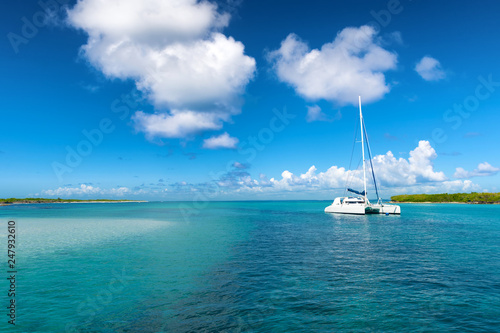 Leinwand Poster Catamaran mooring near Petite terre, Guadeloupe, French West Indies, blue sky ba