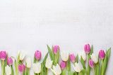 Fototapeta Tulipany - Spring greeting card, pastel color tulips on the gray background.