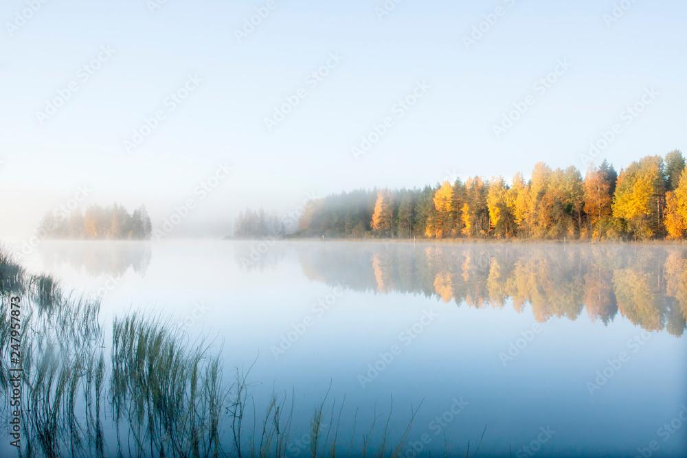 Fototapeta Beautiful autumn morning landscape of Kymijoki river waters in fog. Finland, Kymenlaakso, Kouvola.