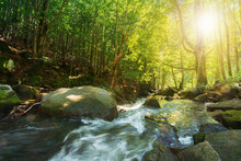 Forest Stream Among The Rocks. Beautiful Summer Scenery On A Sunny Day. Wonderful Nature Background. Refreshing Rapid Flow In Sun Rays
