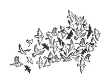 Birds Flying In Form Of Arrow Symbol Engraving Vector Illustration. Scratch Board Style Imitation. Black And White Hand Drawn Image.