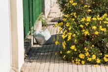 White Plastic Bag Thrown On A Sidewalk Next To A Splendid Yellow Flower Bush