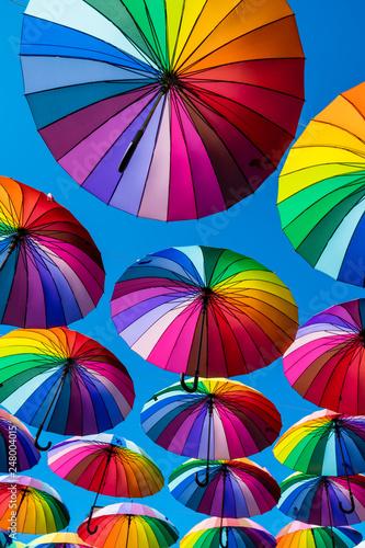 Fotografia  Many colorful umbrellas. Rainbow gay pride protection