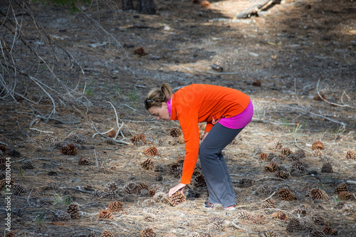 Fotografie, Obraz  Adult woman bends over, picking up a large Jeffrey Pine Cone in a field in Mammoth Lakes California