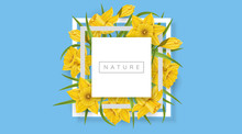 White Square Frame With Yellow Daffodil Flower And Green Leaf, On Blue Background. Vector Illustration For Spring Banner Design, Template For Nature Or Easter Designs