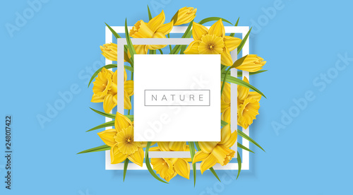 Leinwand Poster White square frame with yellow daffodil flower and green leaf, on blue background