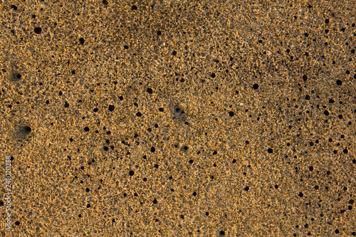 In de dag Stenen yellow gray sand on the beach with black holes closeup. natural surface texture