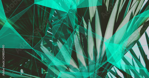 Palm Leaves. Geometric Abstract design. Polygonal tropical background. - 248034410