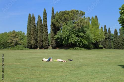Fotografie, Obraz  Parco pubblico con persone sdraiate