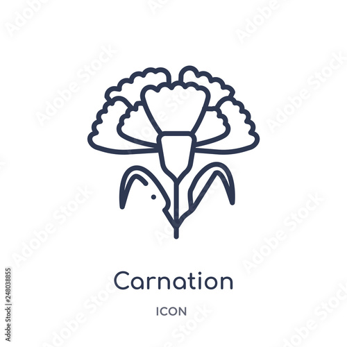 carnation icon from nature outline collection Wallpaper Mural