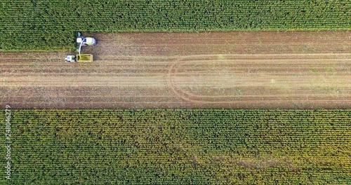 corn harvesting in Europe birds eye view of combine harvester Fototapete