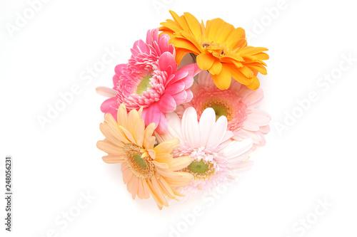 Canvastavla ガーベラの花束