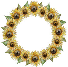 Wreath Round Frame Of Flowers Of Buds Of Leaves Of Stalks Of A Sunflower