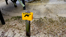 Manatee Slow Please Yellow Metal Sign
