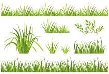 Green Grass Seamless Pattern. ...
