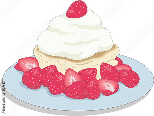 Valokuva Strawberry Shortcake Vector Illustration