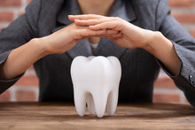 Woman's Hand Protecting White Tooth