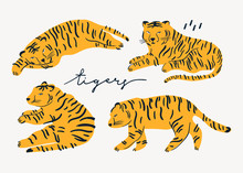 Tiger Lies In Various Poses. Hand Drawn Vector Set. All Elements Are Isolated