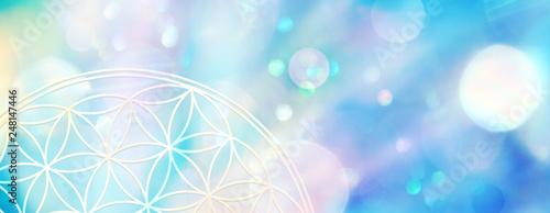 Photo  Banner Blume des Lebens, die Licht in zarten Pastellfarben aussendet