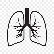 Lungs Vector Outline Icon. Col...