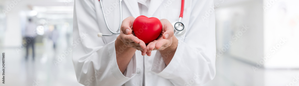 Fototapeta Doctor holding a red heart at hospital office. Medical health care and doctor staff service concept.