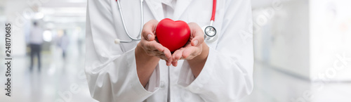 Fototapeta Doctor holding a red heart at hospital office. Medical health care and doctor staff service concept. obraz