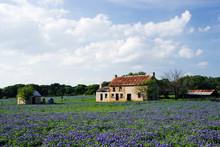 A Deserted Farmhouse