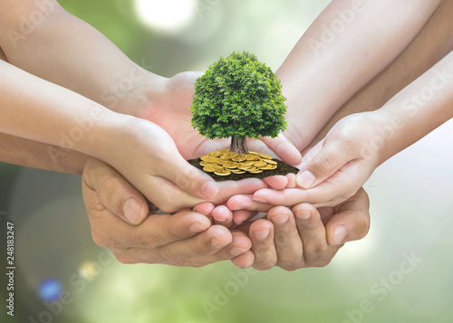 Retirement planning and family investment concept with wealthy tree growing on parent - Wallpaper Mural