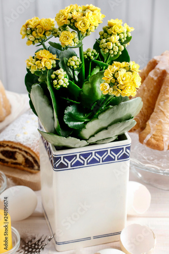 Fotografie, Obraz  Kalanchoe blossfeldiana on Easter table.